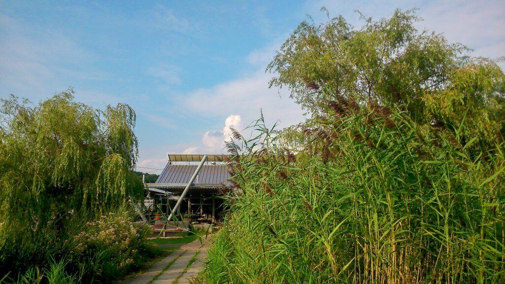 Grote tuin in Buitenplaats Plantage Vogelenzang