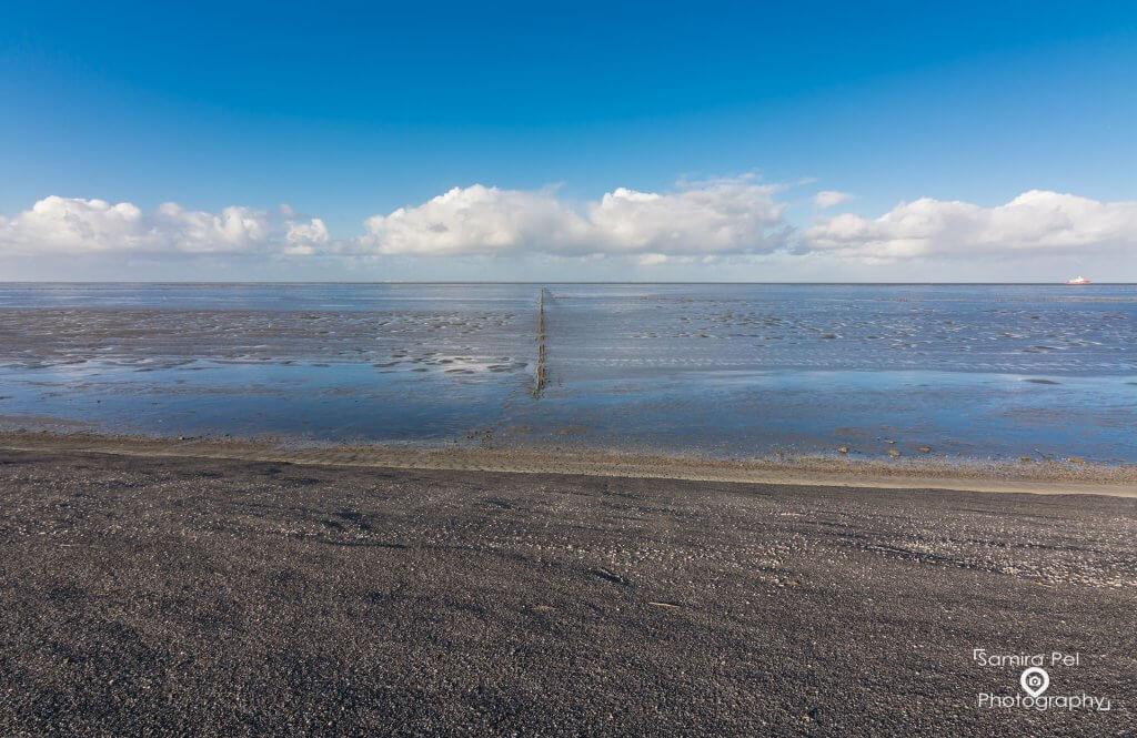 Sandbank of the Waddenzee