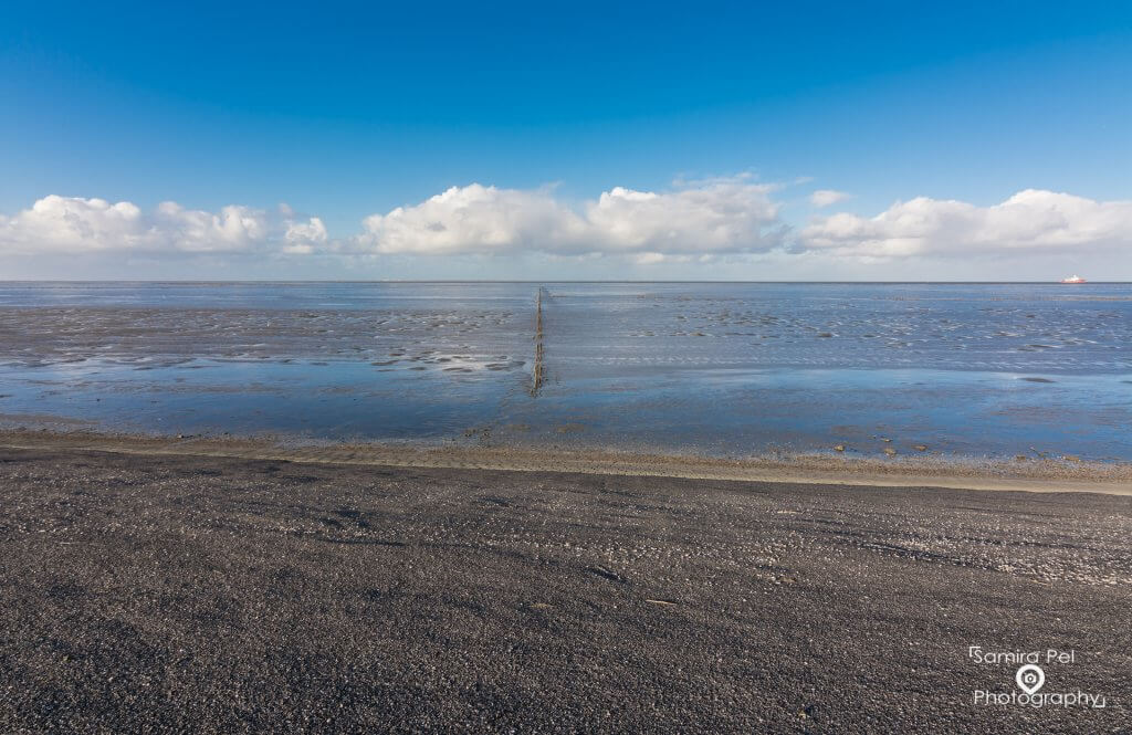 Zandplaat van de Waddenzee